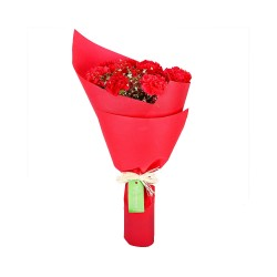 Red Carnation Carnival