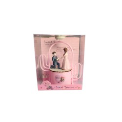 Pink Wedding Couple Light Box