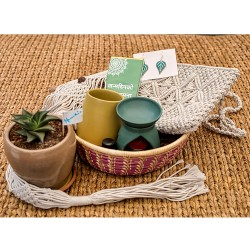 Luxury Gift Basket for HER